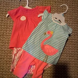 Bundle of 6 month baby girl new clothing